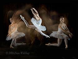 FEW_Ballet_-5.jpg