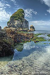 Harris_Beach_2.jpg