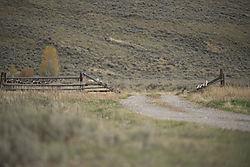 Forgotten_Fence_DSC8554.jpg