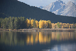 Reflections_at_Oxbow_Bend_DSC7043.jpg