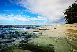 VNM9826_seaside_sm.jpg