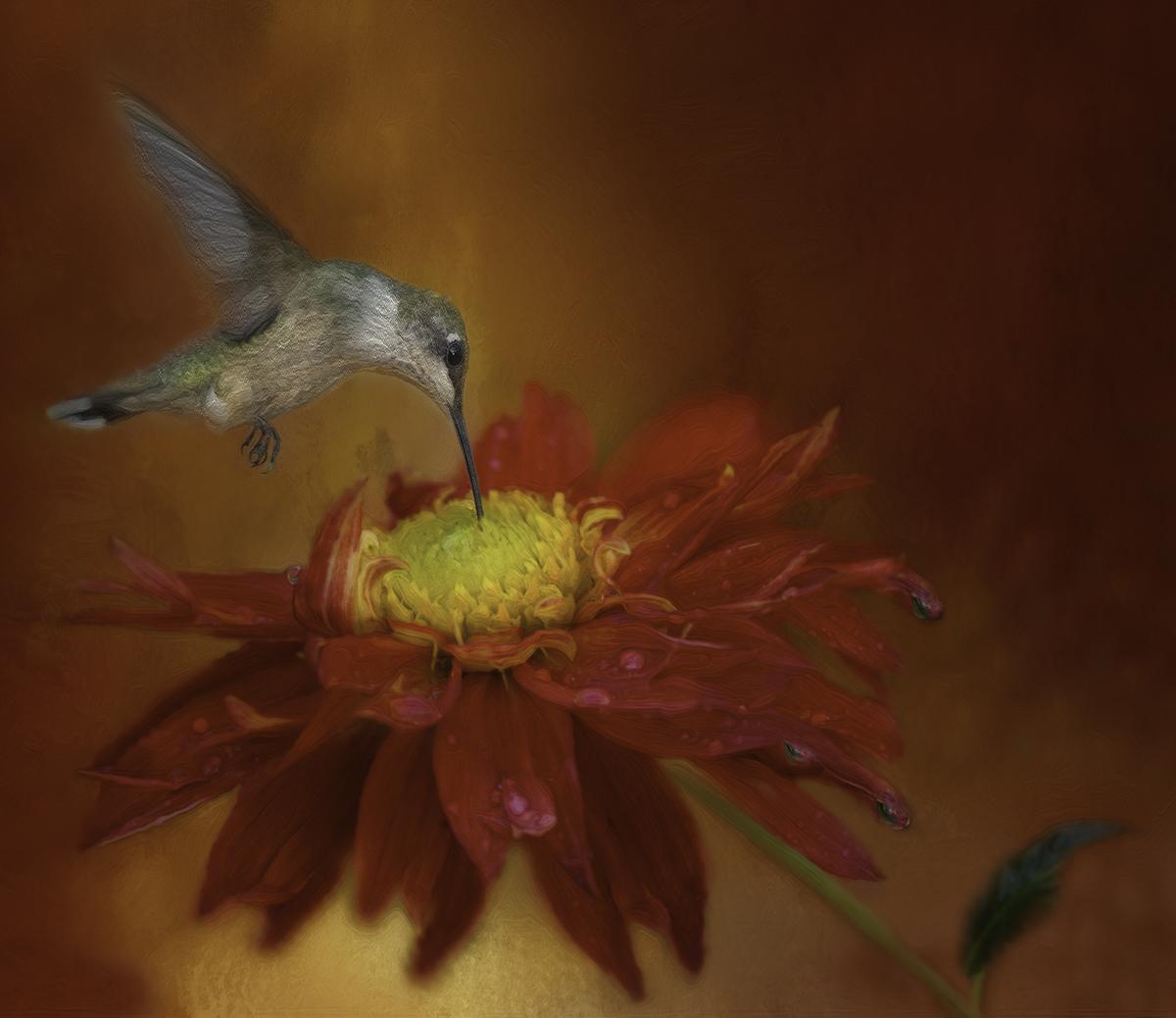 september_digitalart_birdied