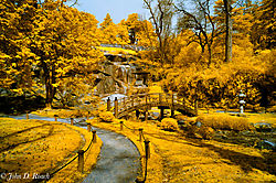 Japanese_Garden_at_Maymont-2.jpg