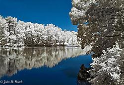 Summer_Pond-3.jpg