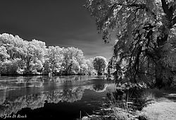 The_Local_Lagoon-1.jpg