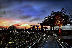 4575Ab_sunrise_Gardens_by_the_Bay_on_09-07-16.jpg