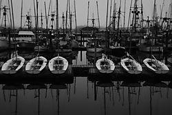 Newport_Docks.jpg