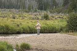 Fly_Fisherman_at_Holzwarth_Historic_Site_3251.jpg