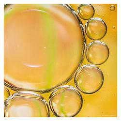 Oil-19.jpg