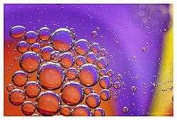 Oil-25.jpg