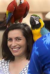 parrot_lady.jpg