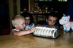 Ummm_Cake.jpg