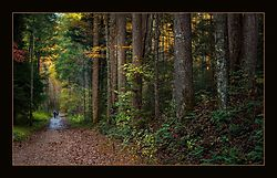 January_landscape_Melman59.jpg