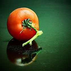 Tomate_20.jpg