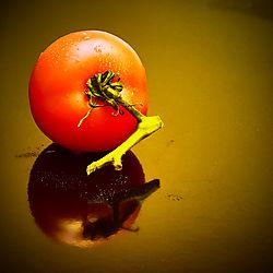 Tomate_26.jpg
