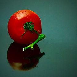 Tomate_44.jpg