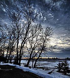 6Sunset_Trees.jpg
