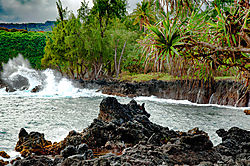 Maui-7.jpg