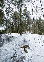 Greenwood_Park-5.jpg