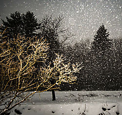 SnowDay_Jan42018_5CR.jpg