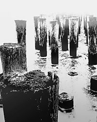 703Old_Pier_in_Fog_copy.jpg