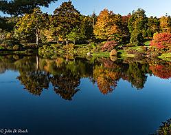 Asticou_Azalea_Garden_near_Acadia_NP-1.jpg
