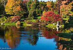 Asticou_Azalea_Garden_near_Acadia_NP-3.jpg