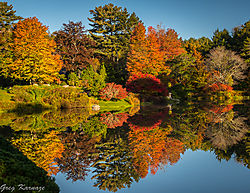 Fall_Colors-Reflections.jpg
