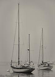 Sailboats-B_W-2.jpg