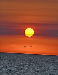 Goodmorning_Sun_12_14_17.jpg