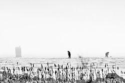 ice_fishers1.jpg