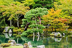 Arashiyama_Garden_Pond_12_Aug_2018_Low_Res.jpg