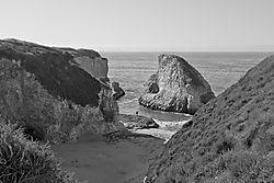 California_Dreamin_B_W_22_Nov_2020.jpg