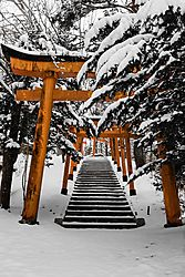 First_Snow_Takeyama_1_Feb_2020_Low_Res.JPG