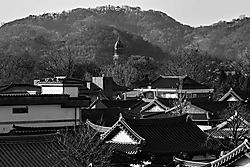 Jeonju_Countruside_28_Dec_19_Low_Res.JPG