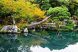 Tenryu-ji_Lake_11_Aug_2018_Low_Res.jpg