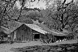 The_Barn2_13_Mar_21.jpg
