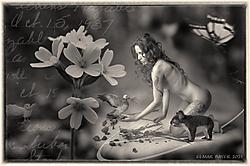 Old_Postcard.png