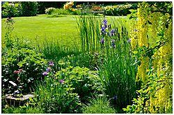 Pond_and_garden2_140508.jpg