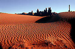 jrp3_mv_brush_and_dunes_large_1024w.jpg