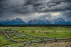 Triangle_X_Ranch_and_the_Tetons.jpg