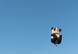 Unique_Photo_Panda.jpg