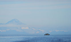 DSC_8094_-_Fishing_Boat_Tutka_Bay_AK_for_Posting.jpg