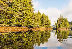 2016_Alaska-263.jpg