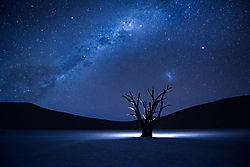 Starry_Night_in_DeadVlei.jpg