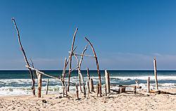 Pomponio_Beach_Driftwood_Structure_2019-008.jpg