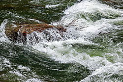 Yuba_River_White_Water_2019-412.jpg