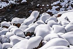Donner_Pass_Canyon_Creek_2019-0050.jpg