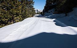 Donner_Pass_Overland_Route_2021-2374.jpg