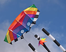 Dublin_Emerald_Park_Kites_2013-0021.jpg